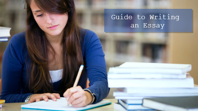 Write My Essay  Guide to Writing an Essay     pnmj org