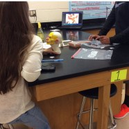 MHS Forensic Science Students  Benefit from MISD Education Foundation Grant