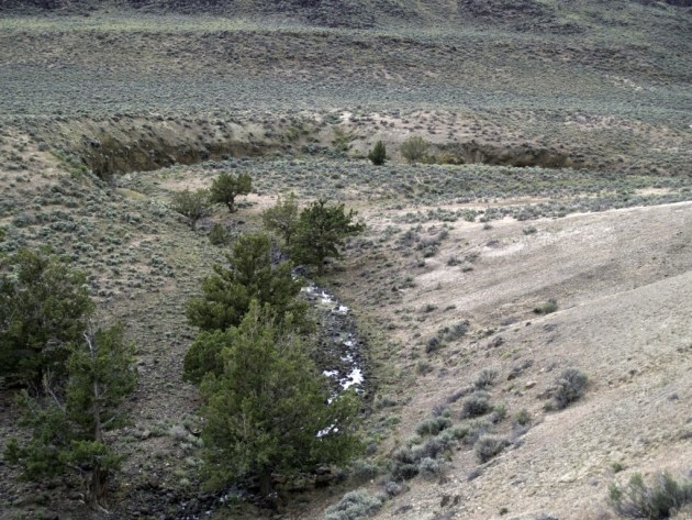 Remains of river on top of Abert Rim