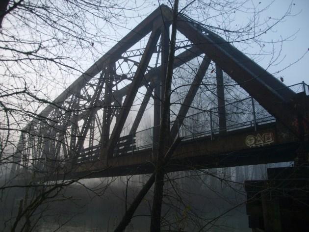 Twin Peaks Ronette's Bridge