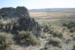 Westfall endless terrain email