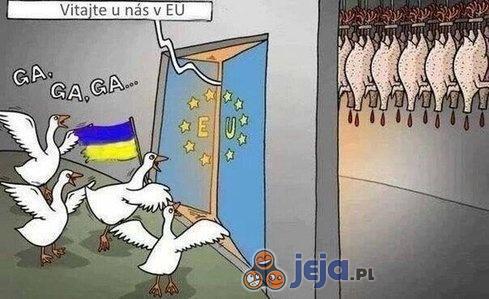Ukraina 346+ Najlepszych Memów Jeja.pl