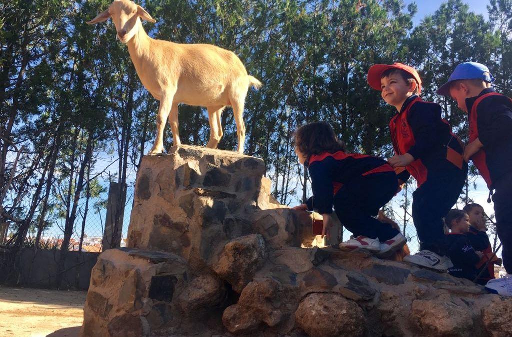 Montessori visita Poblado Tartésico