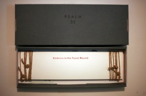 psalm 22 book in box