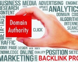 """Graphic showin a hand holding a box that says """"Domain Authority"""" - SearchEngineNews.com"""