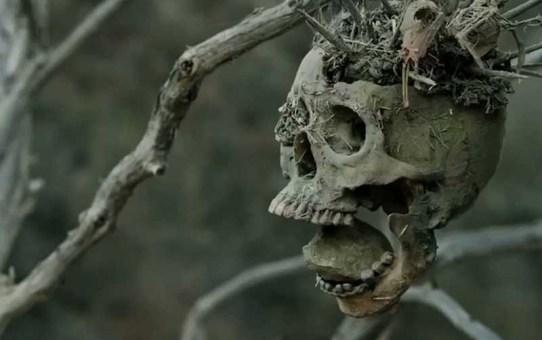 Crítica   Bone Tomahawk