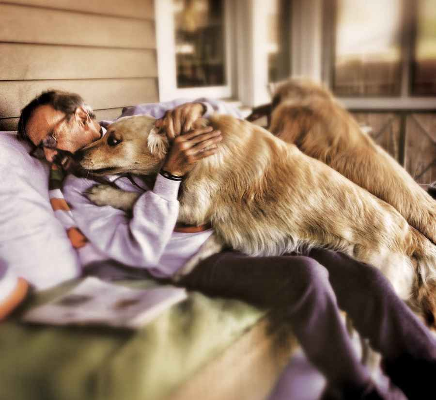 mimi-dog-essay-3.jpg