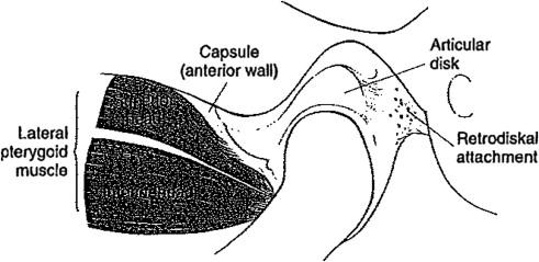 Diagnosis and Treatment of Temporomandibular Disorders