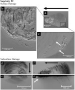 Sliding contact wear and subsurface damage of CAD/CAM materials against zirconia