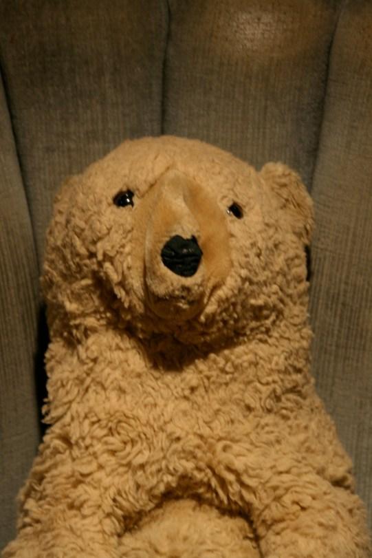 Fred Bear Close Up
