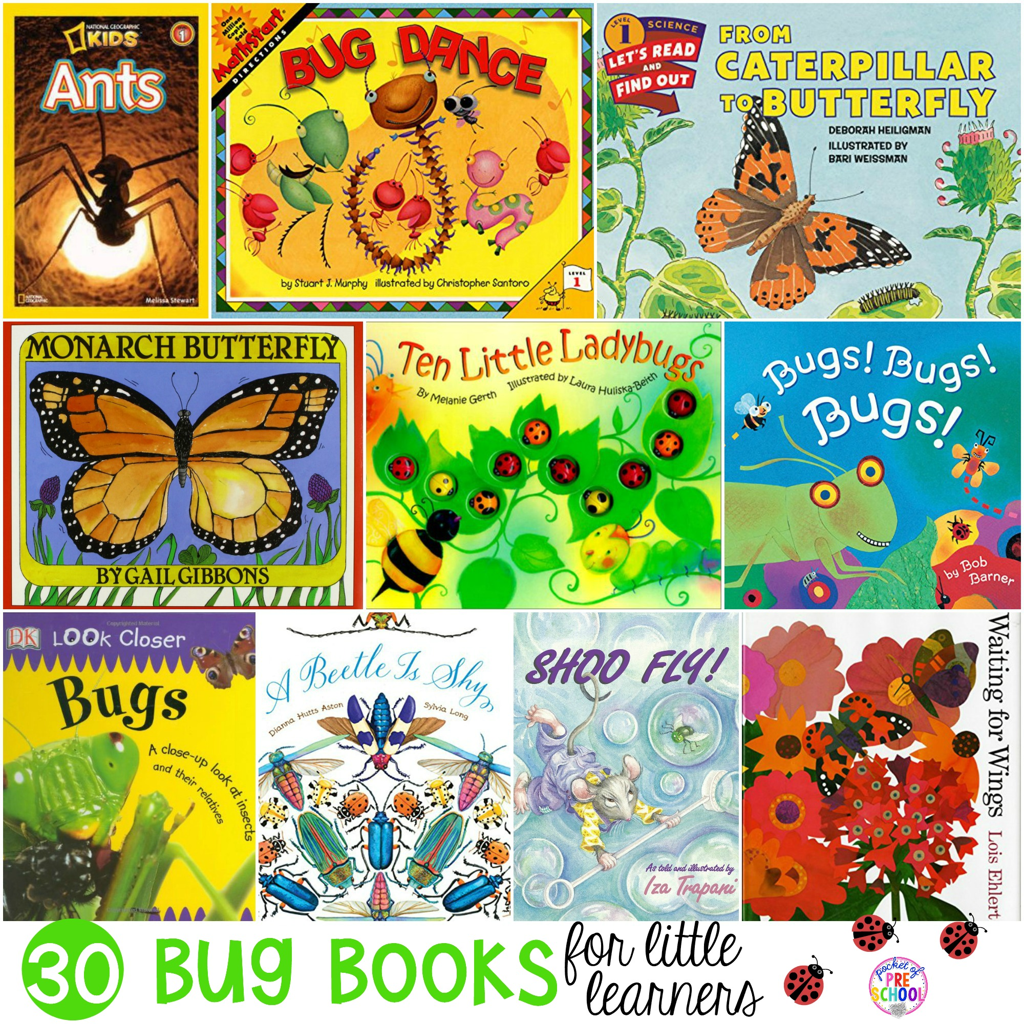 Bug Books For Little Learners