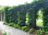 """""""Ruins"""" in the Italian garden."""