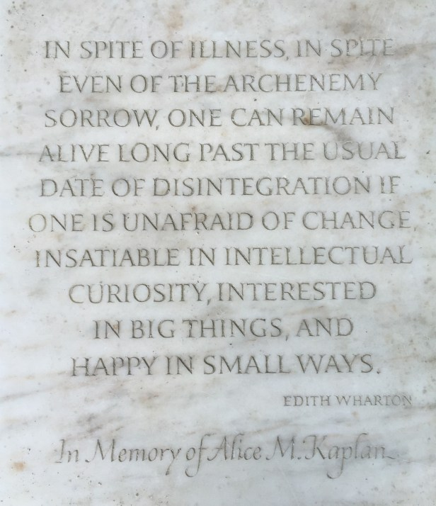 """""""In spite of illness, in spite even of the archenemy sorrow, one can remain alive long past the usual date of disintegration if one is unafraid of change, insatiable in intellectual curiosity, interested in big things, and happy in small ways."""" —Edith Wharton"""