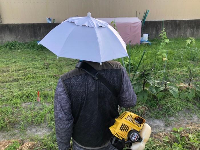 被る日傘で草刈り