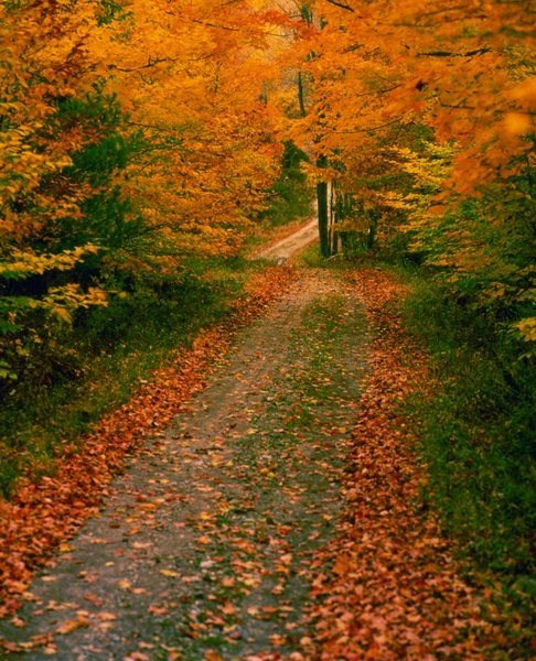 fall foliage poconos mountain bike trails