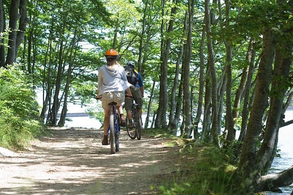 Mountain Biking in the Poconos affordable bike rentals