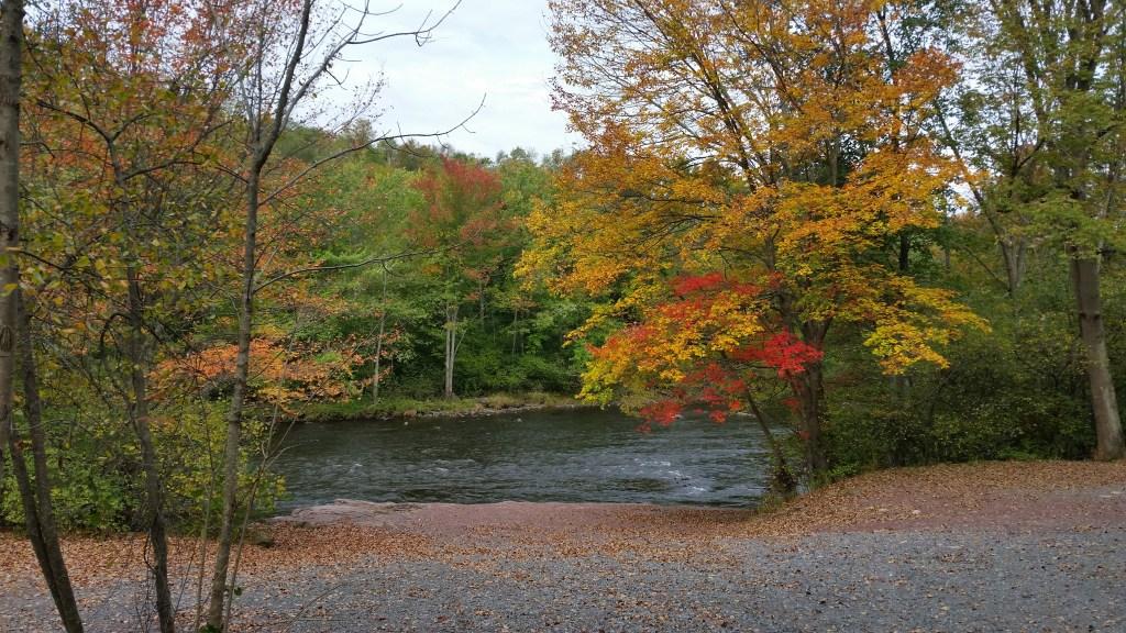 Fall Foliage Lehigh River Poconos PA