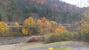 Jim Thorpe Lehigh River Access Fall Foliage Picture