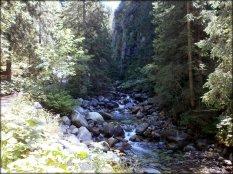 Dolina zadnich Koperszadów - sierpień 2012