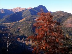 Jesienny krajobraz w okolicach Nosala - październik 2012