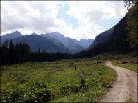 Jaworowa Dolina, w tle widoczne m.in. Lodowy Szczyt i Jaworowy Szczyt - 3 lipca 2013