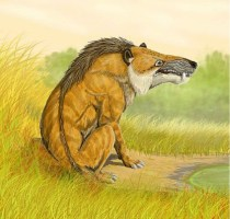 Episodio 2 - La evolución de los mamíferos y primates