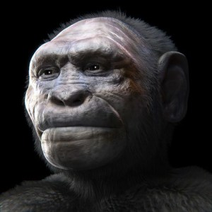 La prehistoria - Homo georgicus