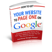 Getting to Page One of Google Search