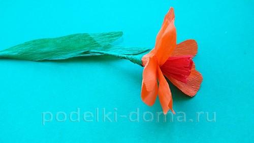 Flower Buttercup mula sa corrugation 07.