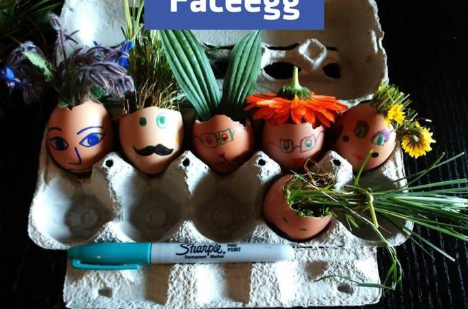FaceEgg – FacciaUovo