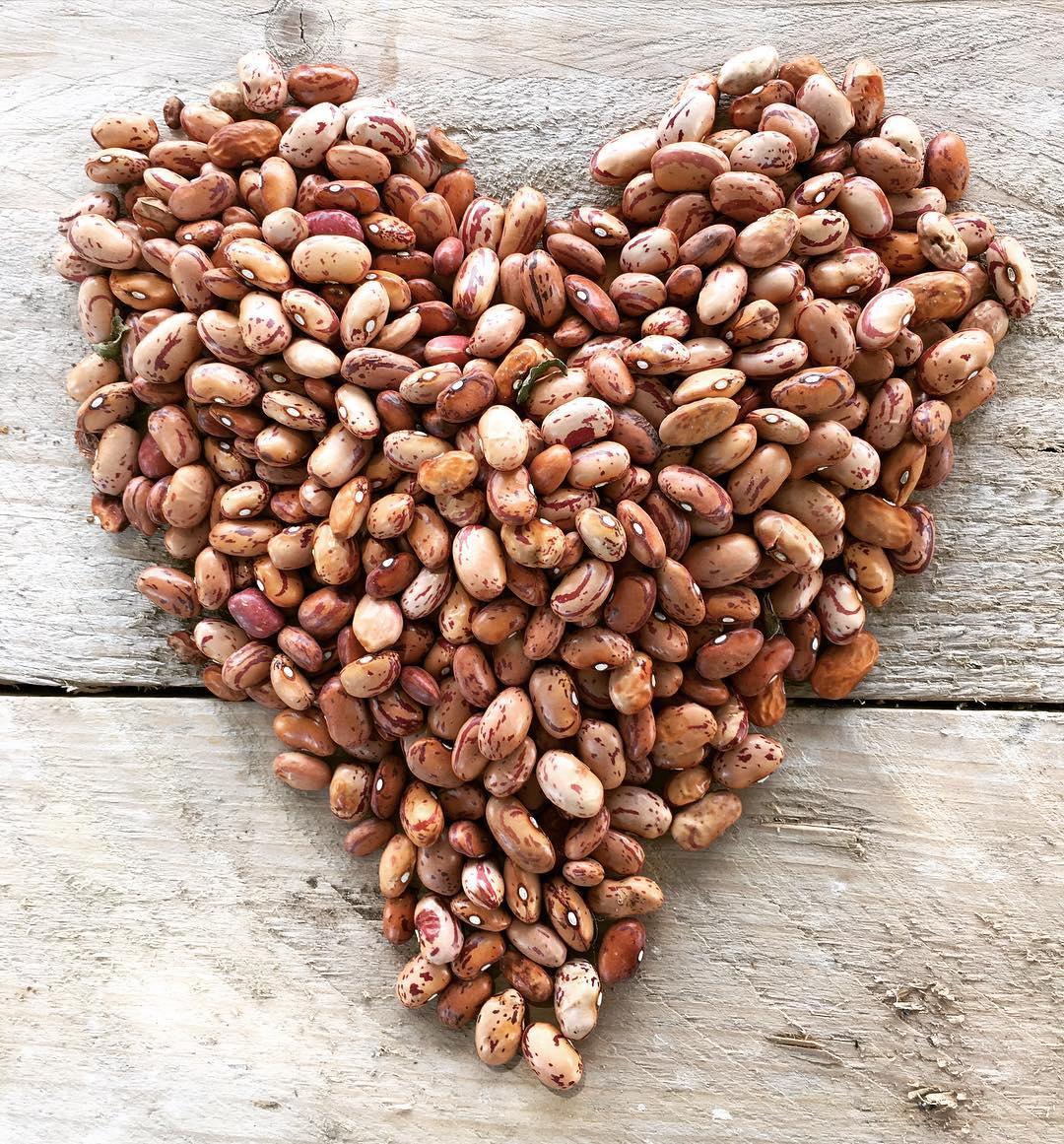 Metterci il cuore, sempre ❤️ #podereargo #instalife #instalove #agriturismo #fagioi #beans #organic #biologico #happiness #love #cuore #heart #pulses #iyp3016 #legumi #sorano #maremma #toscana #tuscany #farmhouse #farmstay #airbnb