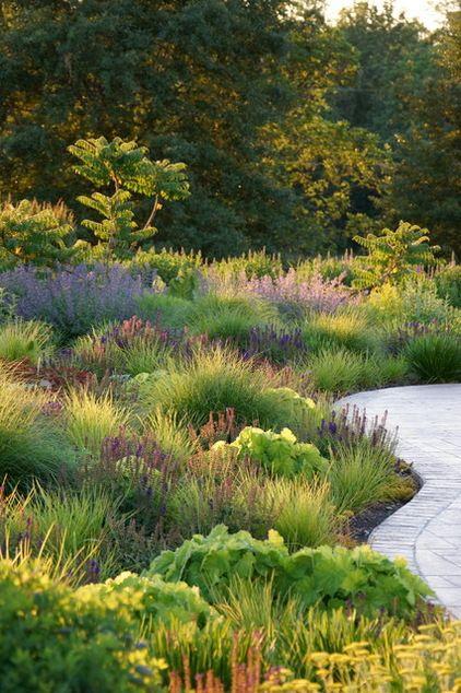 trawy przeplatane z bylinami dają kontrast faktur