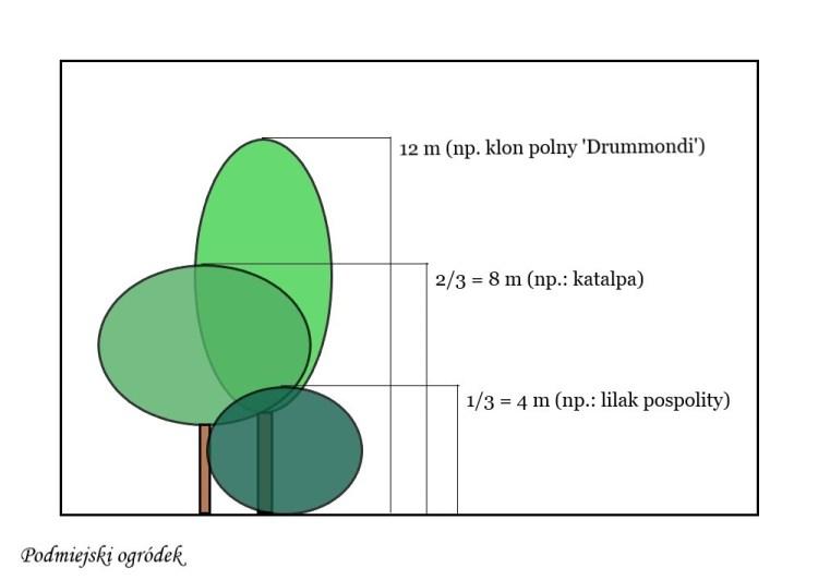 proporcje nasadzeń