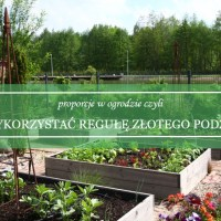Proporcje w ogrodzie czyli jak wykorzystać regułę złotego podziału