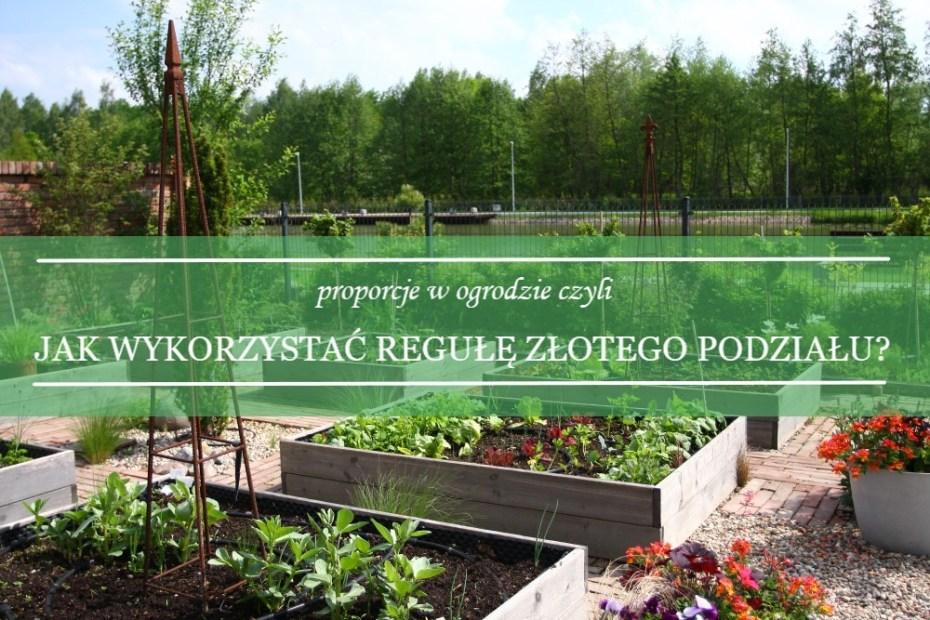 proporcje: reguła złotego podziału w ogrodzie