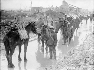 Vimy_Ridge_-_Pack_horses_carrying_ammunition
