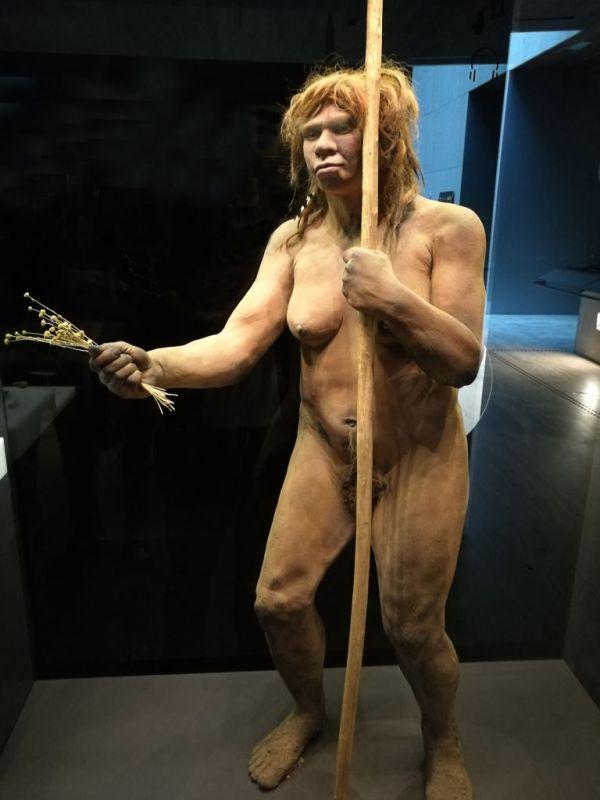 Похожи на нас: составлен портрет доисторического человека ...