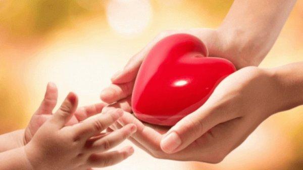 Всемирный день доброты: история праздника, лучшие ...