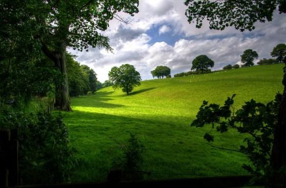 landscape-403165_640