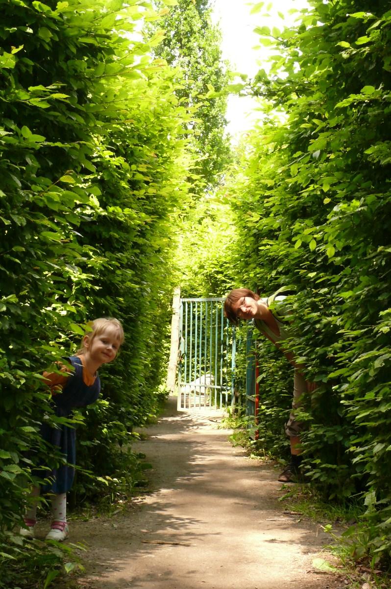 Zielony labirynt, czyli co ciekawego można znaleźć w parku na wrocławskim Brochowie