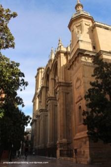 Katedra dookoła