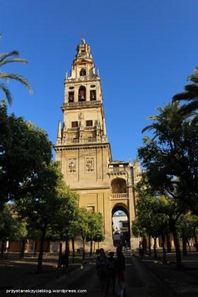 Cordoba_katedra8