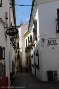 Cordoba_narrow_streets4
