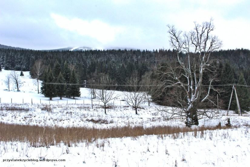 szlak na snieznik3