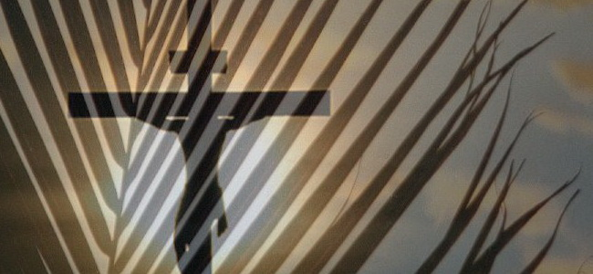 C Palm Sunday lectionary_30_20080827_1520036990 scripturepic