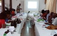 LA POECI FORME 1.444 OBSERVATEURS ET OBSERVATRICES NON-PARTISANS SUR L'OBSERVATION DES ELECTIONS LEGISLATIVES PAR PVT