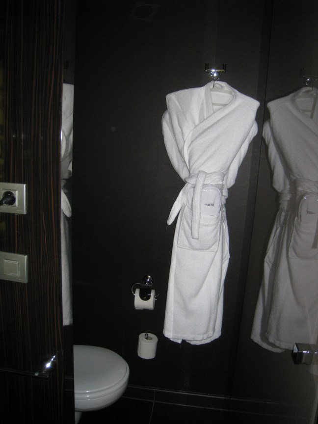 Meridien bathroom 2