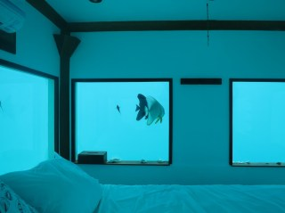 The view in Pemba's underwater room