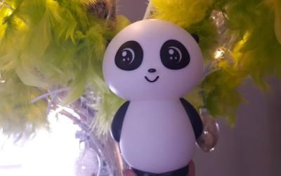 Pandalampje net geleverd