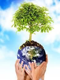 cuidad el medio ambiente